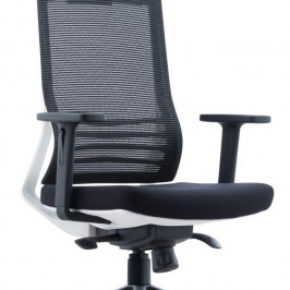 HIGH BACK SWIVEL CHAIR #D8009ZW-AL13A-L01