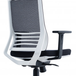 HIGH BACK SWIVEL CHAIR #D8009ZW-NL09B-L01