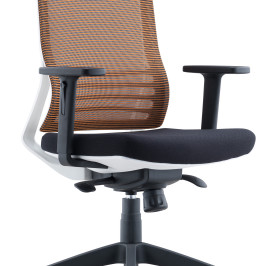 MEDIUM BACK SWIVEL CHAIR #D8009W-NL13A-L06